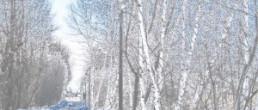 17 Şubat İstanbul'da yoğun kar yağışı bekleniyor!
