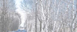 Kuvvetli Yağış ve Yoğun Kar Yağışına Dikkat