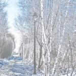 yogun-kar-yagisi